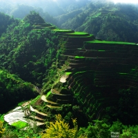 The Banaue Rice Terraces Geometry